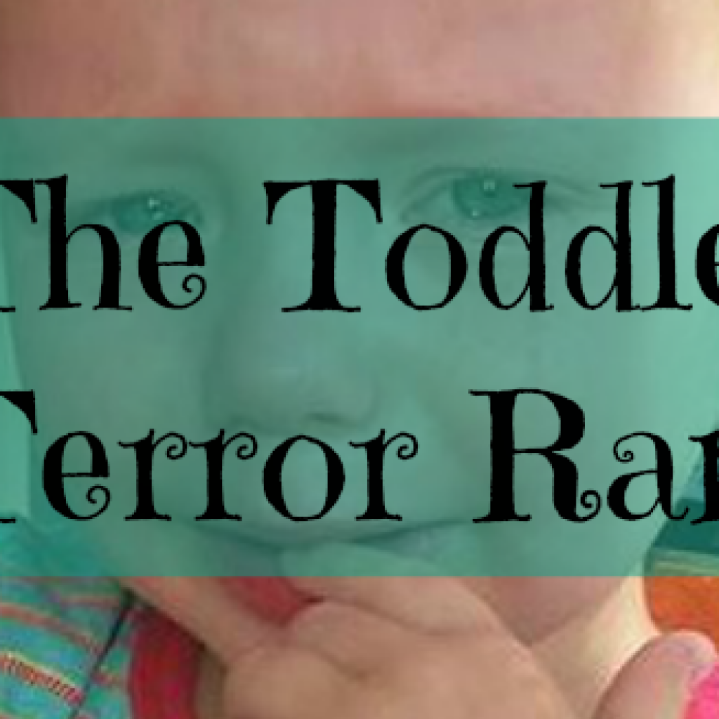 The Toddler Terror Rant