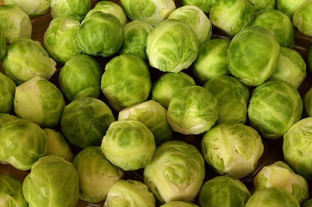 brussels-sprouts-463378_640