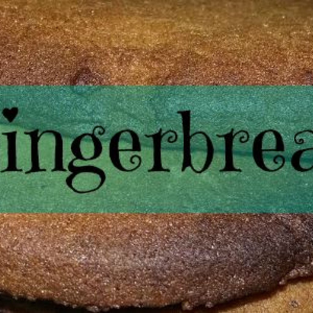 Food for Thought; Gingerbread Biscuits