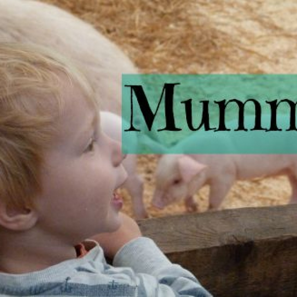 Mummy….. Is That A Monkey?