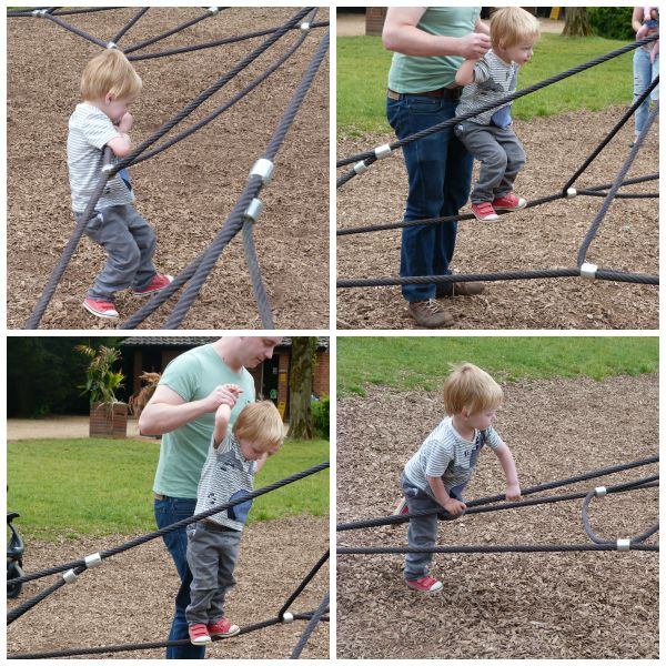 Attempting the Spider Web