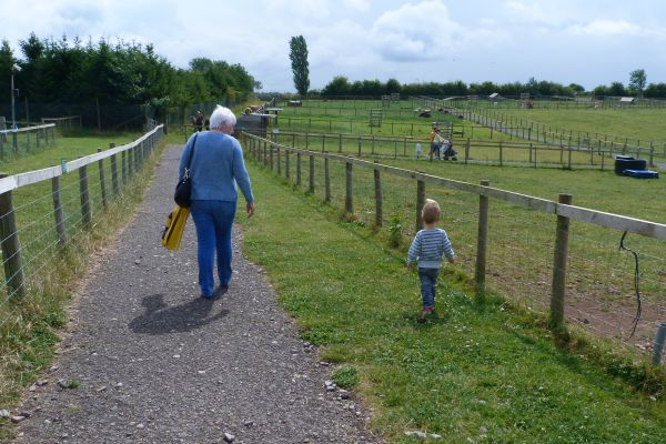 Walking on the Farm