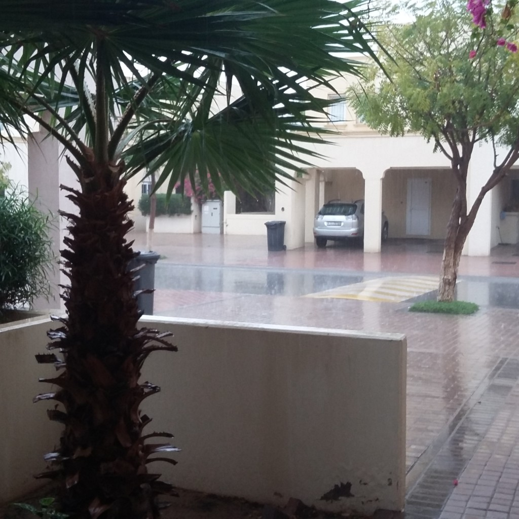 So It Does Rain in Dubai After All