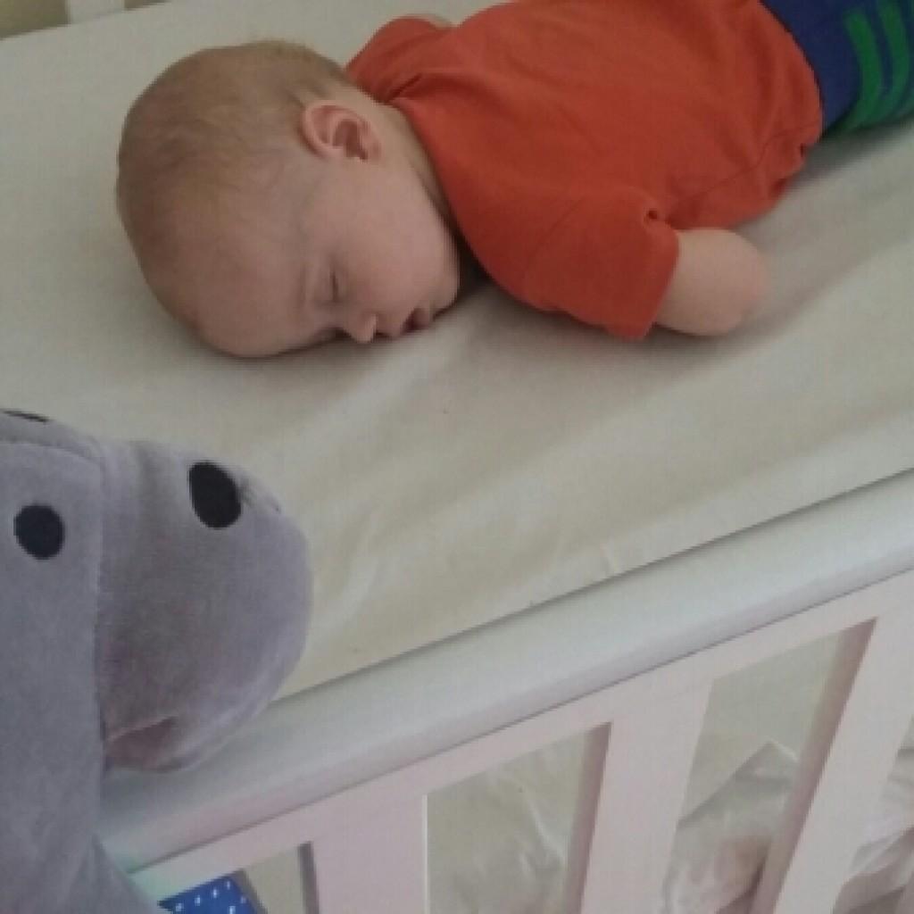 The Whisbear – Helping my Baby Sleep Better?