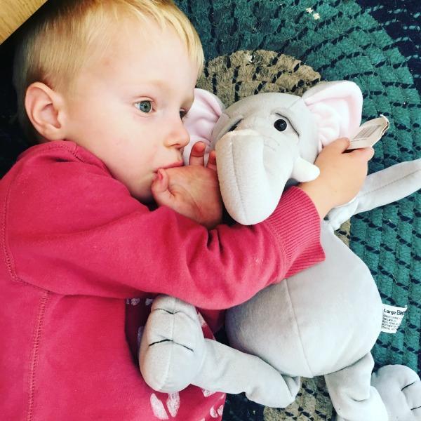 cuddle elephant