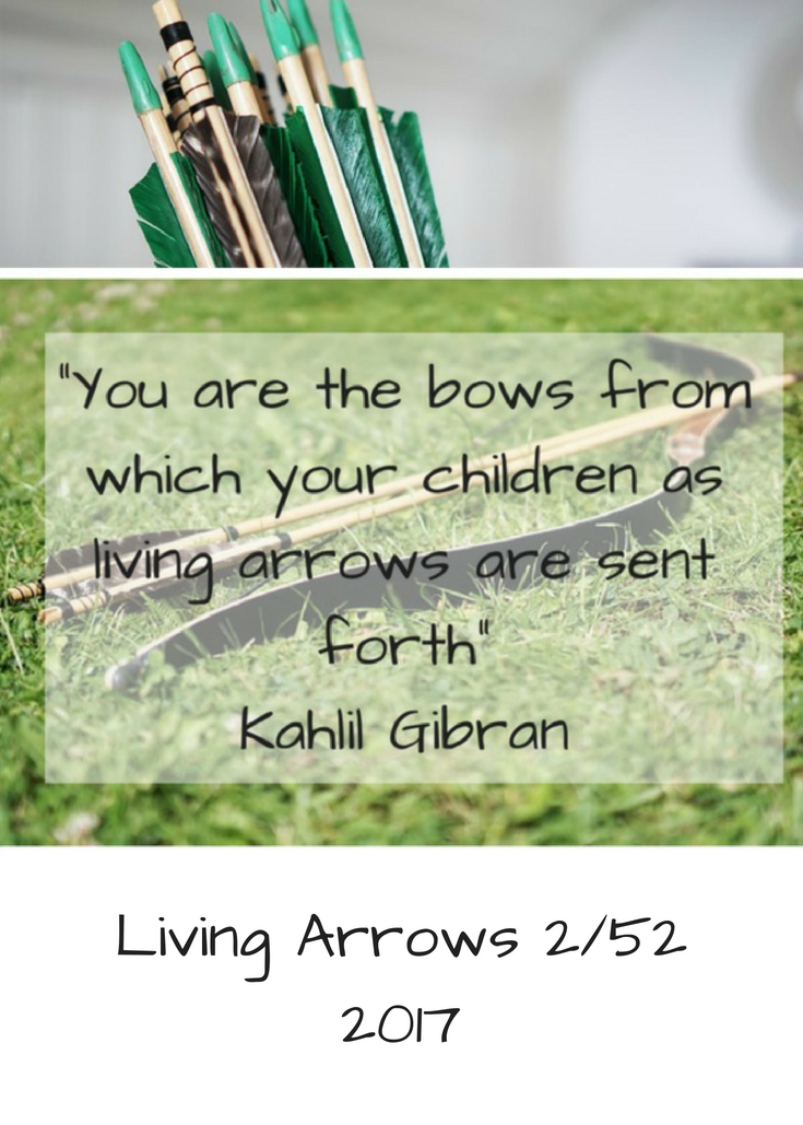 Living Arrows 2/52 2017