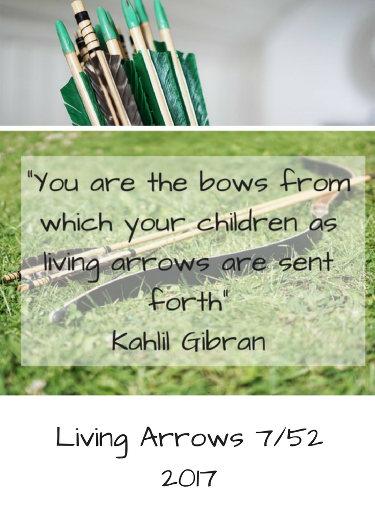 Living Arrows 7/52 Life with Baby Kicks 2017