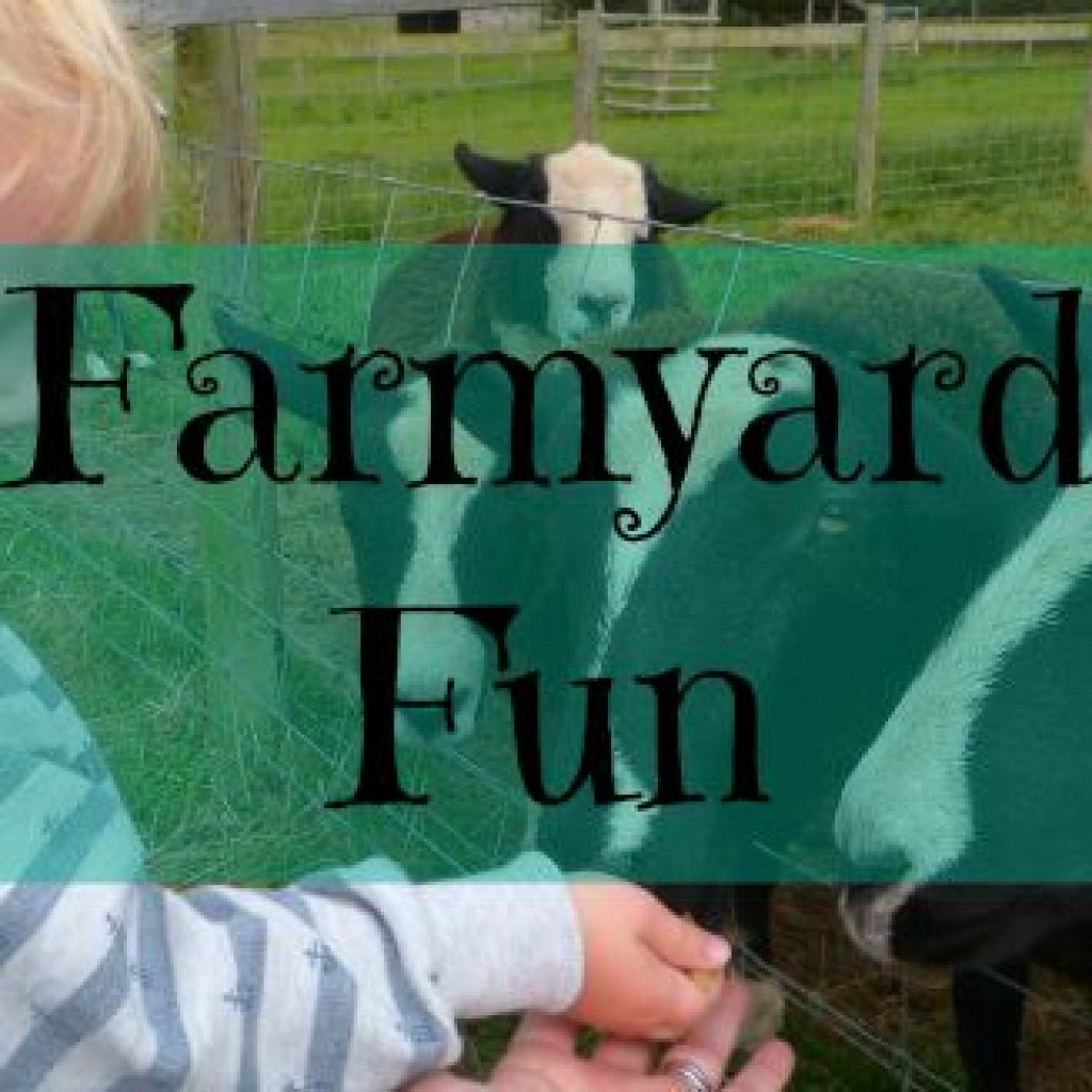 Travel A Day Out; National Forest Adventure Farm