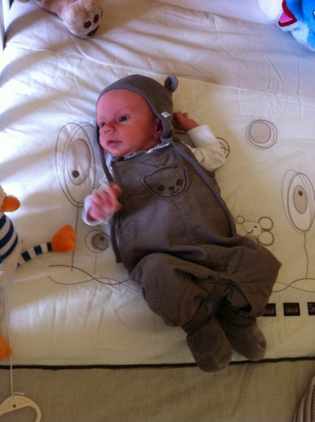 baby in dungarees