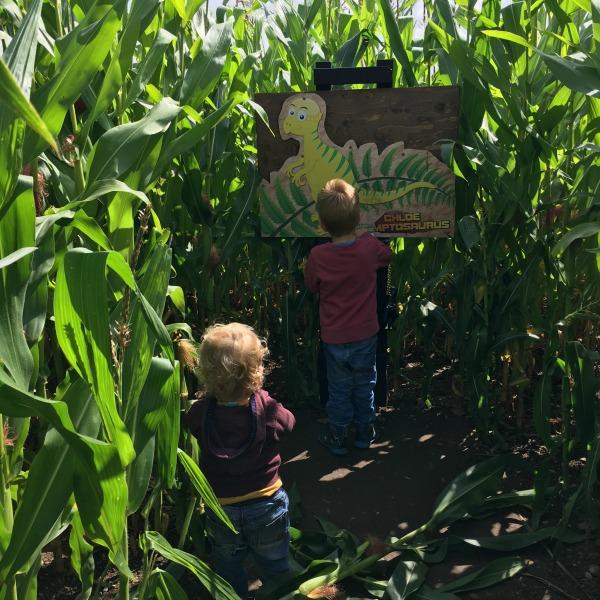 Dino Babies Maize Maze Mini National Forest Adventure Farm