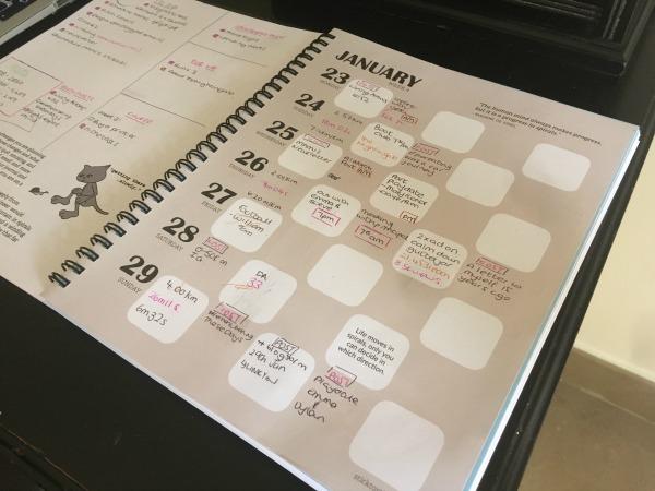 stigu week 2 plan bug