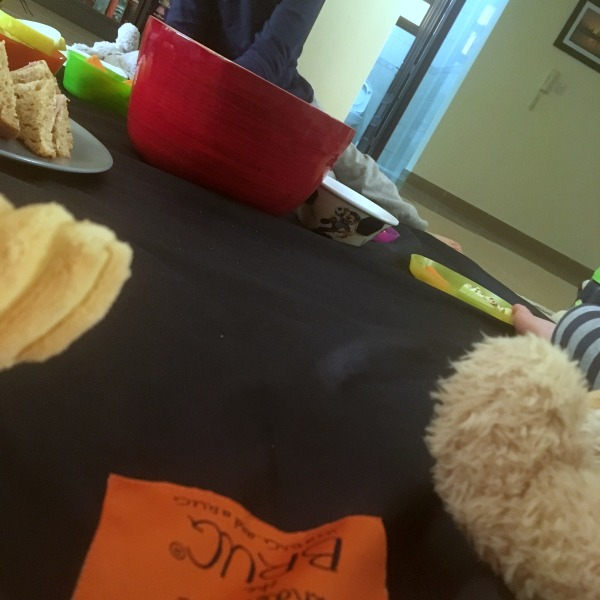 Wunderlife Brug, Bag and rug in one, teddy bear picnic