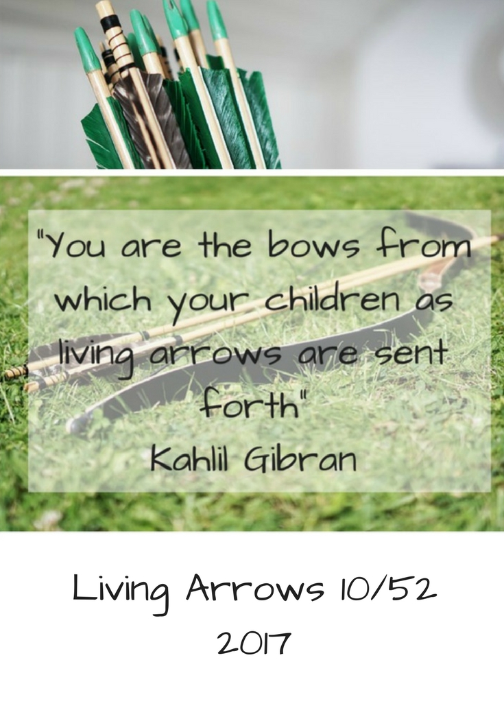 Living Arrows 10/52 2017 Life with Baby Kicks