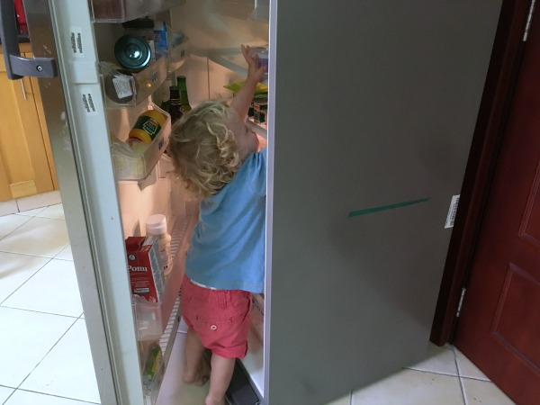 what a two year old really wants for his birthday - two year old birthday present - raiding the fridge