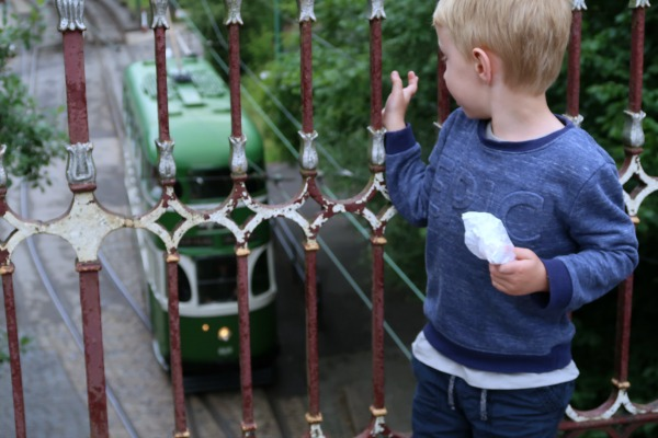 Crich Tramway Village Reviewed: Is it worth it for young kids?