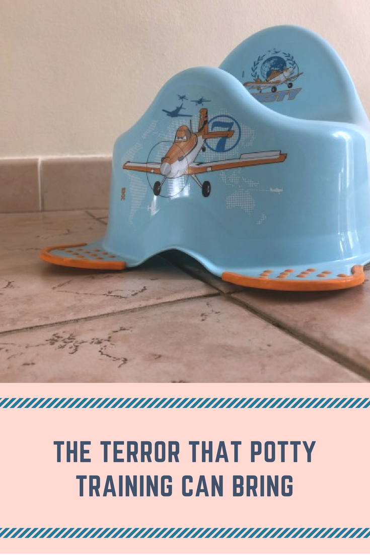 The terror that potty training can bring