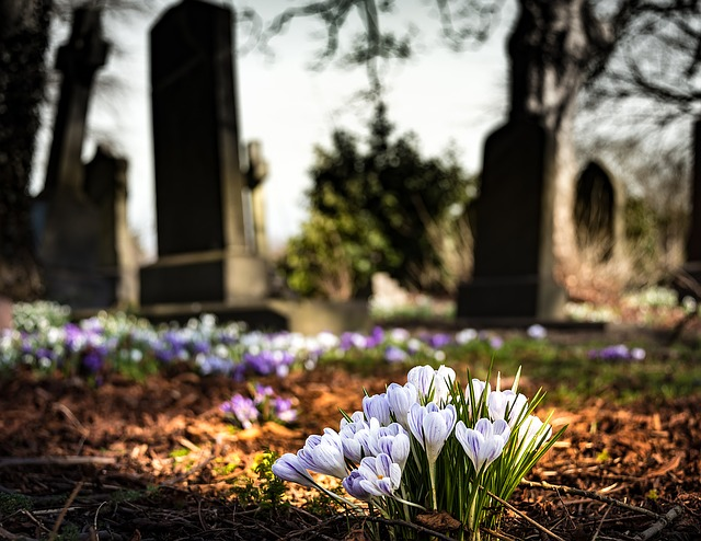 How to help your child understand bereavement