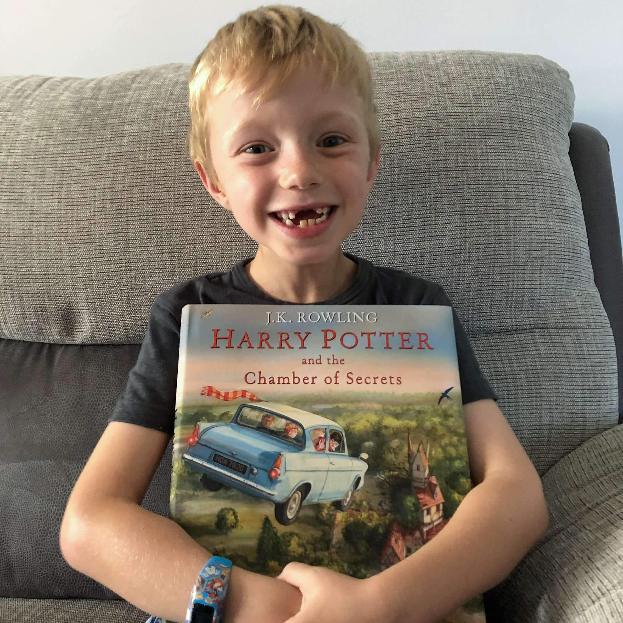 Harry Potter and the Chamber of Secrets illustrated - reading for KS1 children