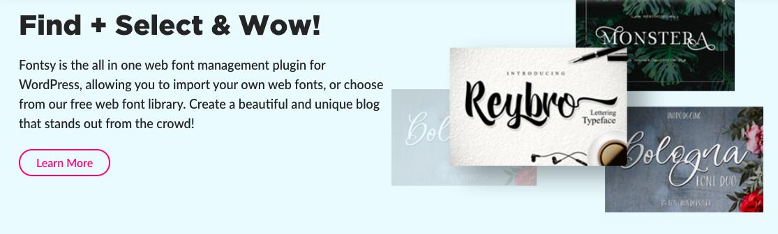 Fontsy WordPress Plugin